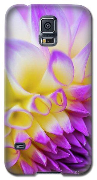 Macro Dahlia Galaxy S5 Case