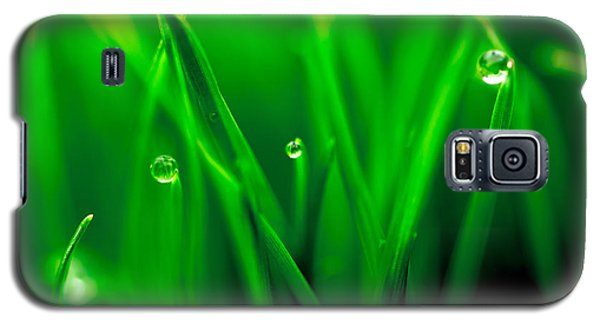 Macro Image Of Fresh Green Grass Galaxy S5 Case by John Williams