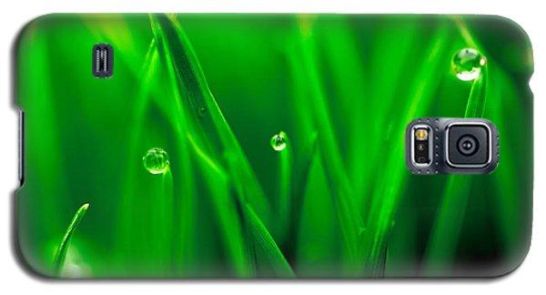 Macro Image Of Fresh Green Grass Galaxy S5 Case