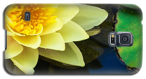 Macro Image Of Yellow Water Lilly Galaxy S5 Case by John Williams