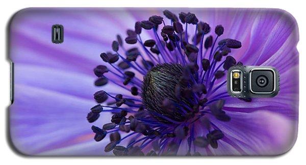 Macro Of Lavender Purple Anemone Galaxy S5 Case