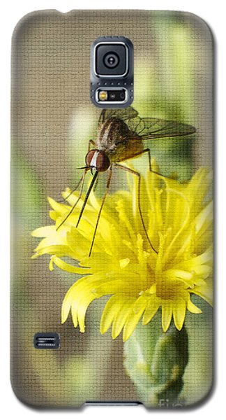 Macro Photography Of A Mosquito Over A Lettuce Flower Galaxy S5 Case by Claudia Ellis