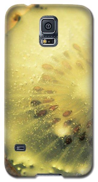 Macro Shot Of Submerged Kiwi Fruit Galaxy S5 Case