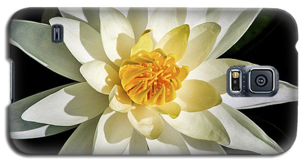 Macro Water Lily Galaxy S5 Case