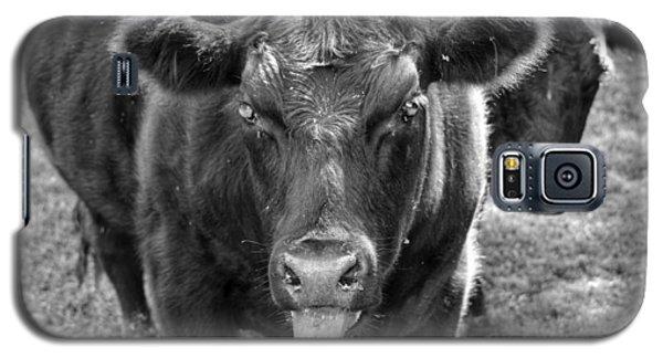Mad Cow  Galaxy S5 Case