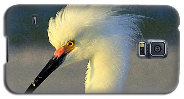 Mad Egret Galaxy S5 Case