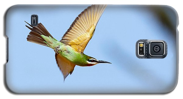 Madagascar Bee Eater In Flight Galaxy S5 Case