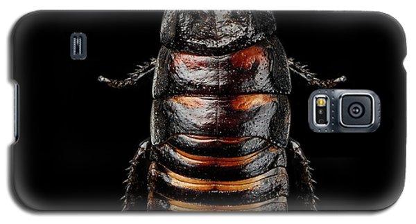 Madagascar Hissing Cockroach Galaxy S5 Case