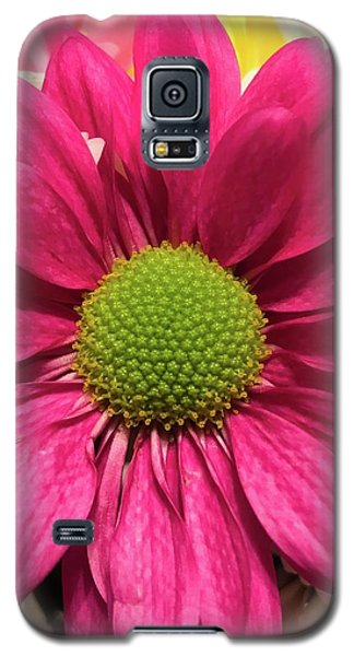 Magenta Chrysanthemum Galaxy S5 Case
