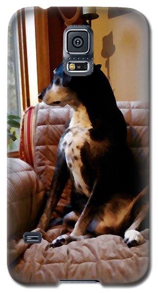 Maggie's Spot Galaxy S5 Case