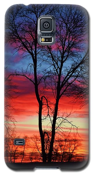 Magical Colors In The Sky Galaxy S5 Case by Dacia Doroff