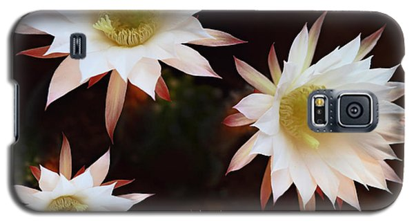 Galaxy S5 Case featuring the photograph Magical Flower by Gina Dsgn