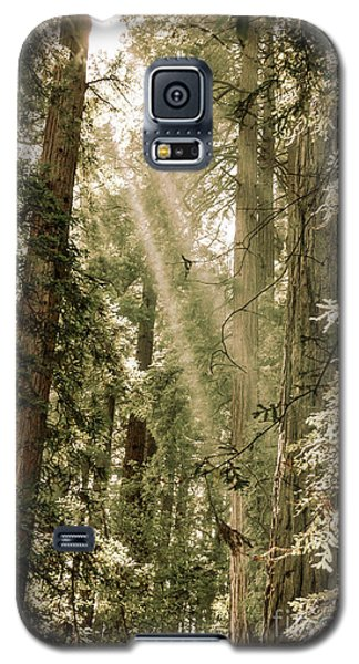 Magical Forest 2 Galaxy S5 Case