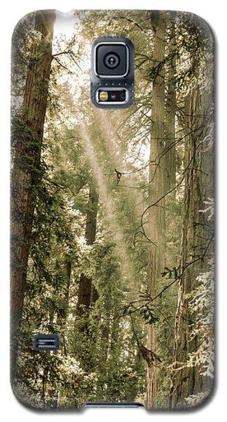 Magical Forest 2 Galaxy S5 Case by Ana V Ramirez