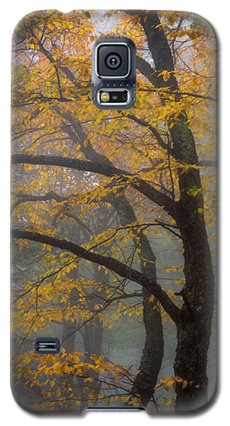 Magical Forest Blue Ridge Parkway Galaxy S5 Case