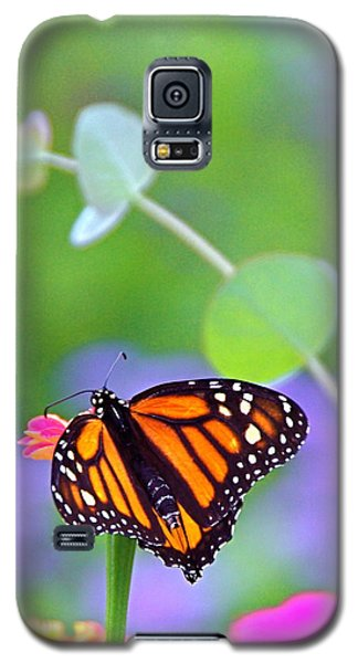 Galaxy S5 Case featuring the photograph Magical Monarch by Byron Varvarigos