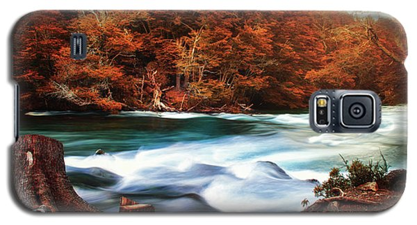 Autumnal Landscape With Lake In The Argentine Patagonia Galaxy S5 Case