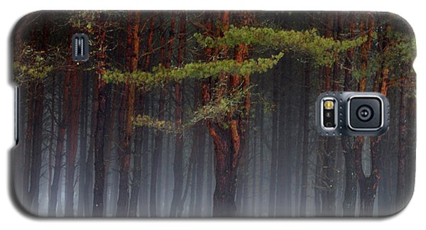 Magical Pines Galaxy S5 Case
