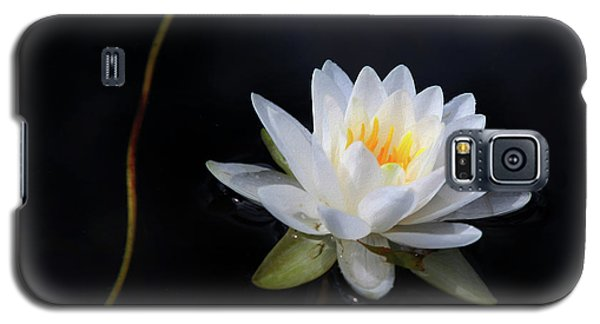 Galaxy S5 Case featuring the photograph Magical Water Lily by Michelle Wiarda