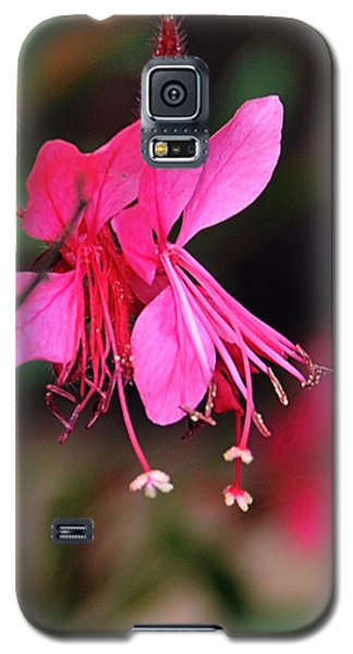 Magnificence Galaxy S5 Case