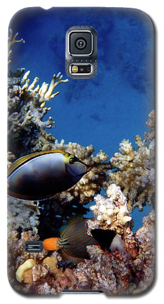 Magnificent Red Sea World Galaxy S5 Case
