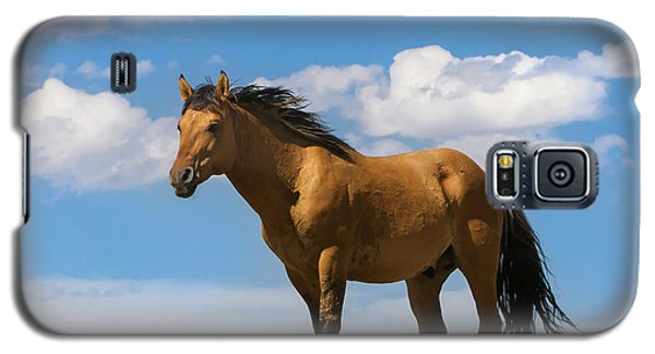 Magnificent Wild Horse Galaxy S5 Case