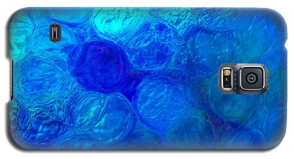 Magnified Blue Water Drops-abstract Galaxy S5 Case
