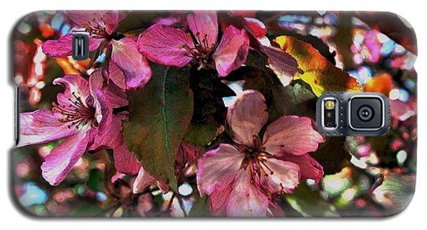 Magnolia Abstract Galaxy S5 Case by Marsha Heiken