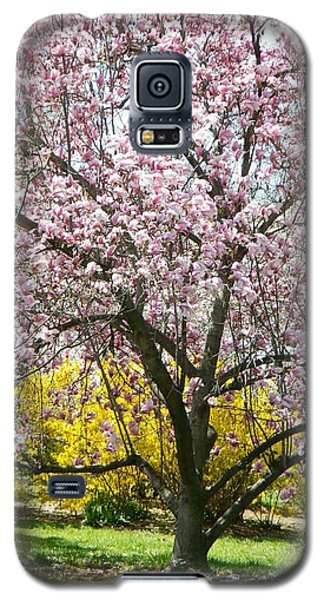 Galaxy S5 Case featuring the photograph Magnolia Blossoms Galore by Emmy Marie Vickers