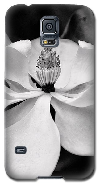 Magnolia Galaxy S5 Case