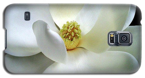 Magnolia Elegance Galaxy S5 Case by Patricia L Davidson