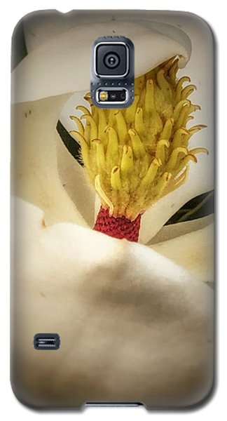 Magnolia Flower Galaxy S5 Case