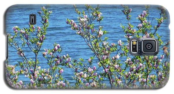 Magnolia Flowering Tree Blue Water Galaxy S5 Case