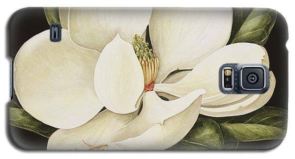 Magnolia Grandiflora Galaxy S5 Case by Jenny Barron