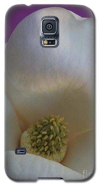 Magnolia Macro Against Purple Galaxy S5 Case