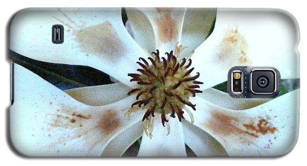 Magnolia Pinwheel Galaxy S5 Case