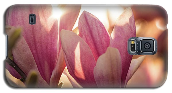 Magnolias At Sunset Galaxy S5 Case