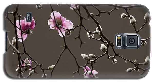 Magnolias In Bloom Galaxy S5 Case