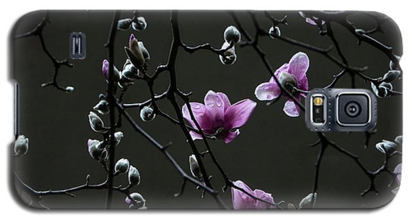 Galaxy S5 Case featuring the photograph Magnolias In Rain by Rob Amend