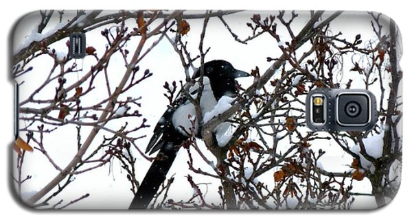 Galaxy S5 Case featuring the photograph Magpie In A Snowstorm by Will Borden