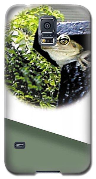 Mailbox  Cameo Galaxy S5 Case