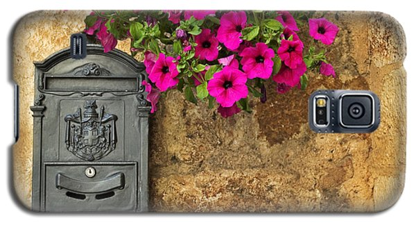 Mailbox With Petunias Galaxy S5 Case