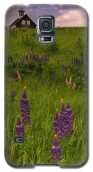 Maine Lupines And Home After Rain And Storm Galaxy S5 Case