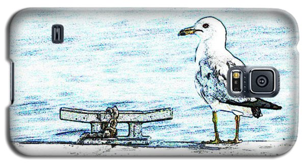 Maine Seagull Galaxy S5 Case