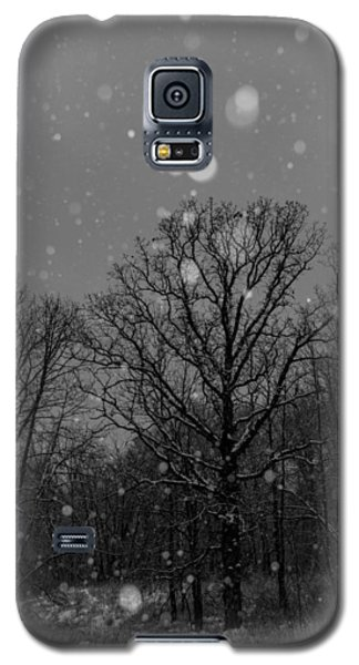 Majestic  Galaxy S5 Case by Annette Berglund