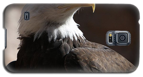 Majestic Eagle Galaxy S5 Case by Marie Leslie
