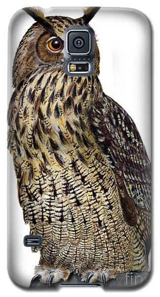 Majestic Eurasian Northern Eagle Owl Bubo Bubo - Hibou Grand-duc - Buho Real - Nationalpark Eifel Galaxy S5 Case