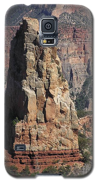 Majestic Galaxy S5 Case