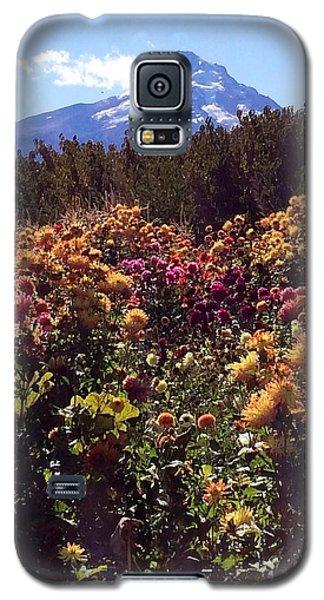 Majestic Mount Hood  Galaxy S5 Case