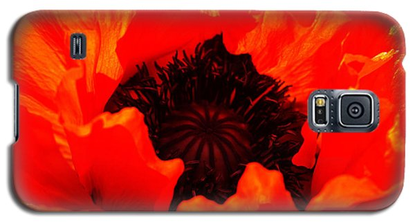 Galaxy S5 Case featuring the photograph Majestic Poppy by Baggieoldboy